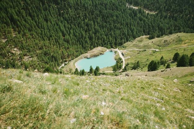 Lago montanhoso na suíça cercado por pinheiros