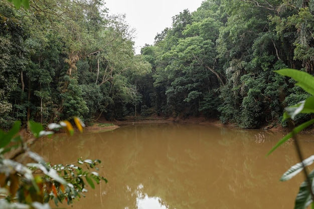 Lago na selva. água de argila suja.