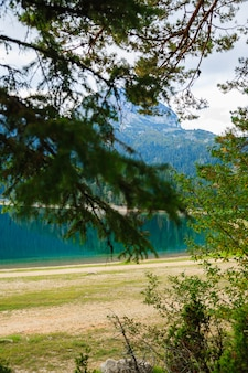 Lago no parque florestal durmitor. montenegro.