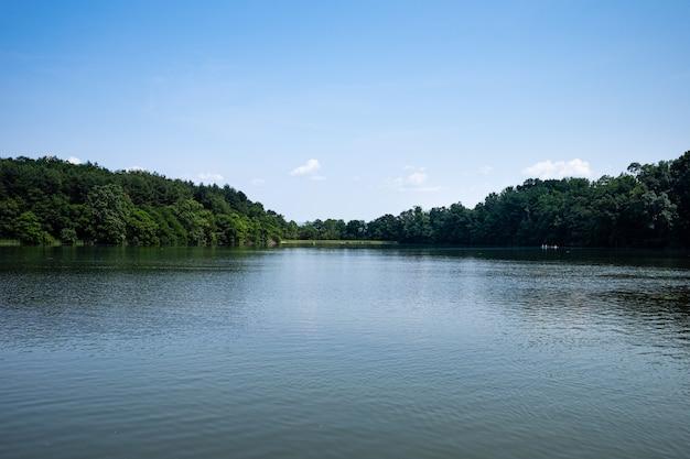 Lago no verão em um dia ensolarado