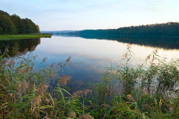 Lago noturno enevoado de outono com bosque na costa