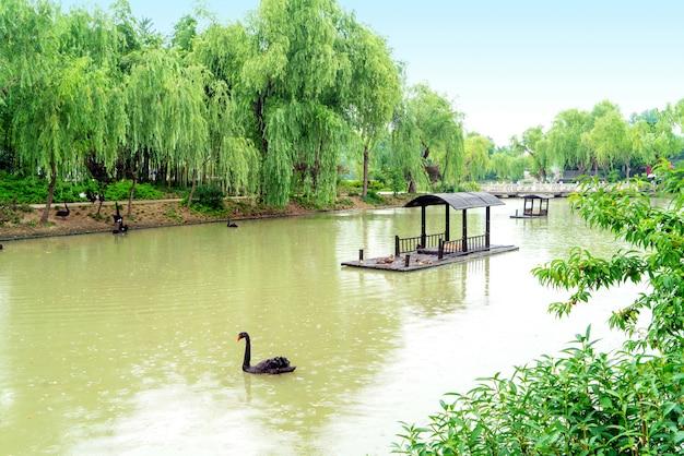 Lago ocidental delgado, yangzhou, china