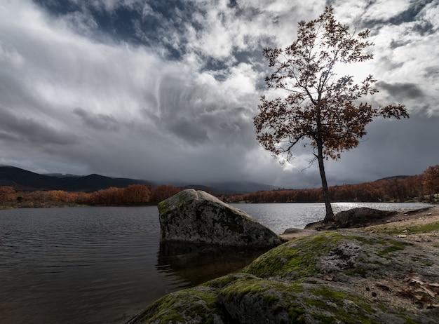 Lago outono