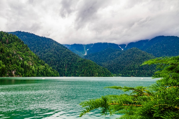 Lago ritsa, na abkházia. lago mountain com colinas verdes da floresta do pinho na costa.