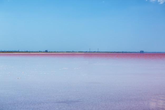 Lago rosa lindo em um dia ensolarado