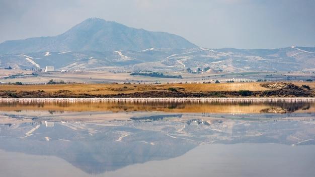 Lago salgado de larnaca com flamingos no fundo chipre
