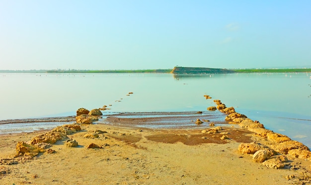Lago salgado em larnaca, chipre - paisagem aquática