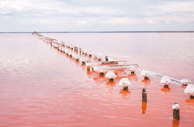 Lago salgado rosa na crimeia