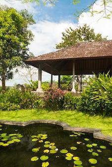 Lagoa de lótus no parque indonésio