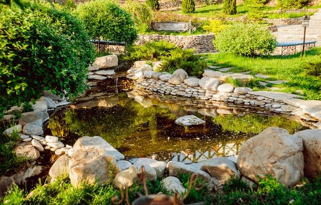 Lagoa do parque cheia de vegetação