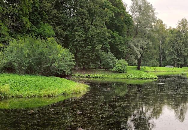 Lagoa no parque de verão. bancos verdes pitorescos cobertos de grama e árvores