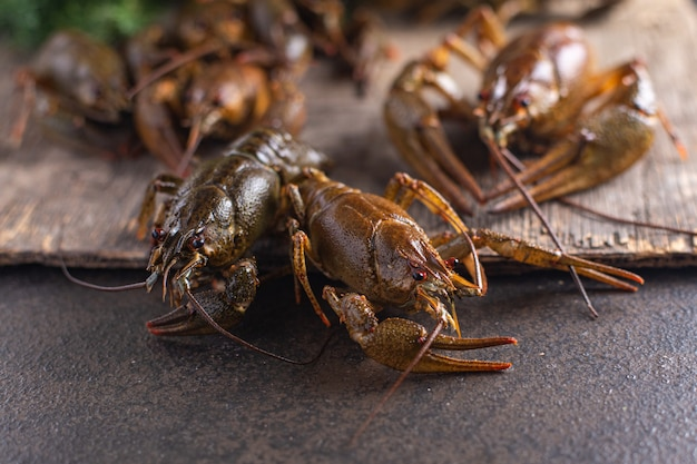 Lagosta crua de frutos do mar frescos lanche na mesa cópia espaço comida fundo rústico