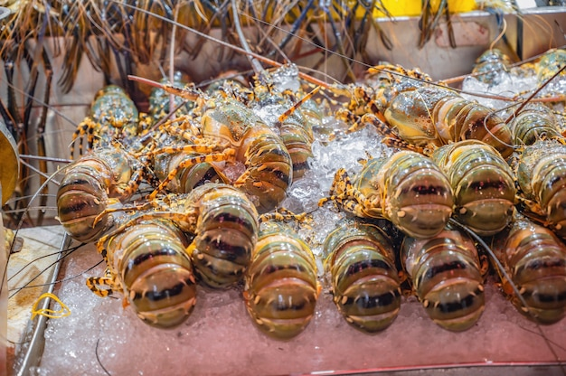 Lagosta no gelo na barraca de comida de rua da tailândia.