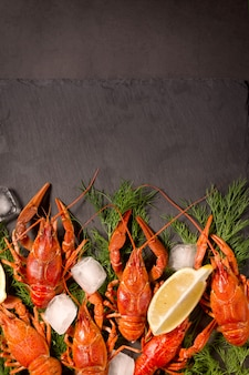 Lagosta vermelha cozida, pronta para comer com rodelas de limão e cubos de gelo em uma superfície preta. lanche de frutos do mar frescos.