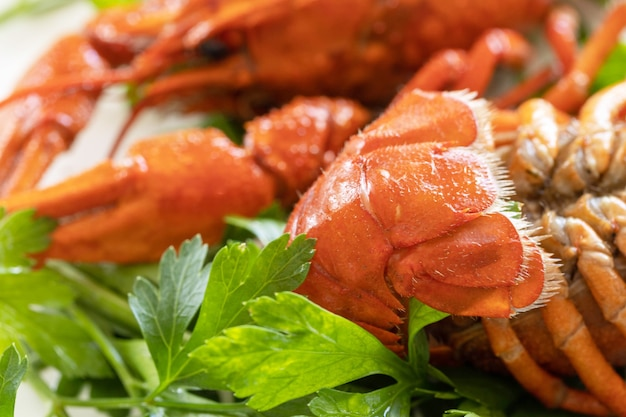 Lagostins cozidos de perto e folhas de salsa proteína de aperitivo