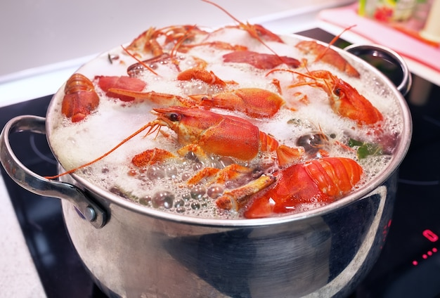 Lagostins frescos são cozidos em uma panela com água fervente.