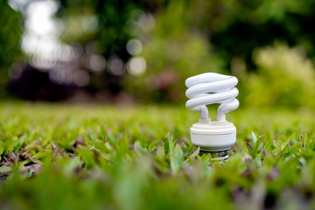 Lâmpada brilhando na grama verde