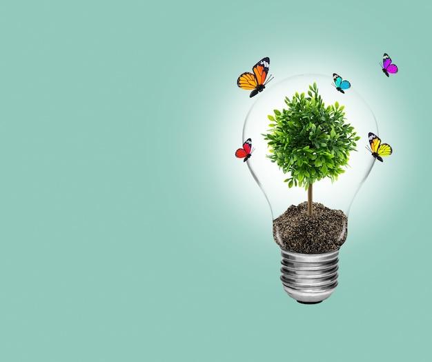 Lâmpada com energia e árvore verde fresca dentro com borboleta