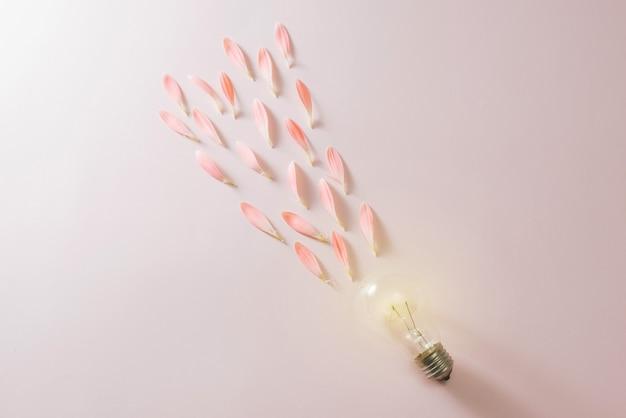 Lâmpada com uma bela flor em fundo rosa