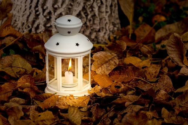 Lâmpada com uma vela no jardim em uma folha seca de outono à noite, luz de uma lâmpada.