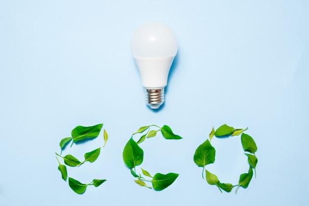 Lâmpada conduzida com folhas em um fundo azul. conceito de eficiência de energia verde.