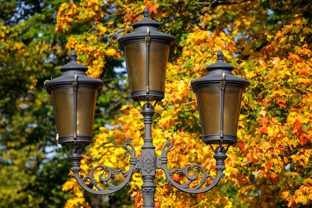 Lâmpada de rua em um fundo de folhas de outono.