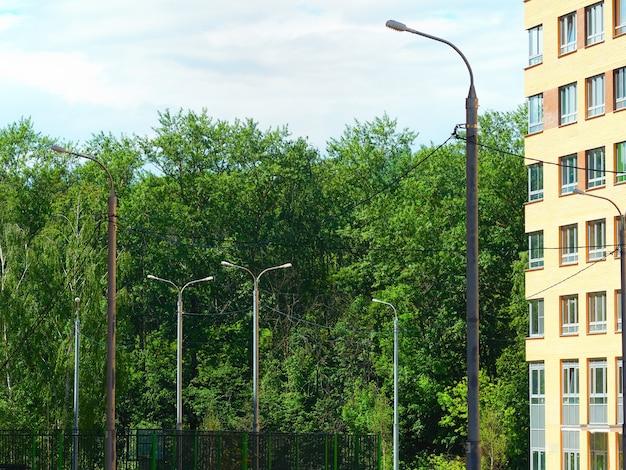 Lâmpada de rua perto do fundo do parque da cidade