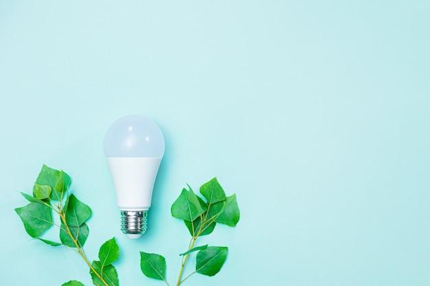 Lâmpada led e galhos com folhas verdes simbolizam a conscientização ambiental e economizam eletricidade para preservar a natureza