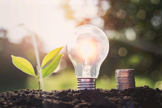 Lâmpadas economizadoras de energia e plantio de árvores no solo. conceito de economia de energia elétrica