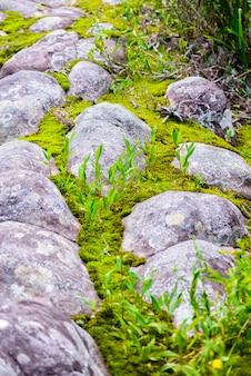 Lan hin pum (fenômeno natural) no parque nacional de phu hin rong kla