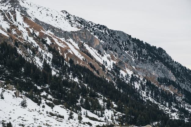 Landskape montanhas inverno, pedra e árvores