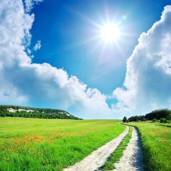 Lane em um prado verde com flores