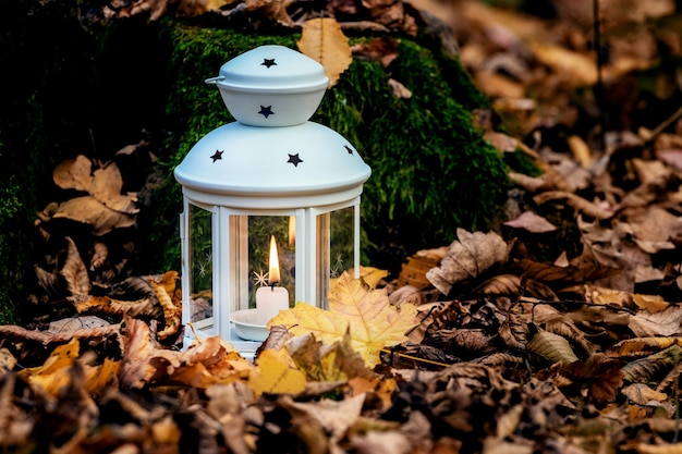Lanterna com uma vela no jardim entre as folhas secas caídas no outono