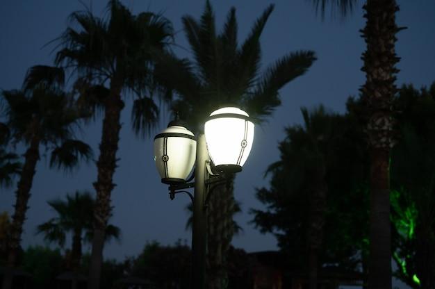Lanterna da noite em um fundo de palmeiras.
