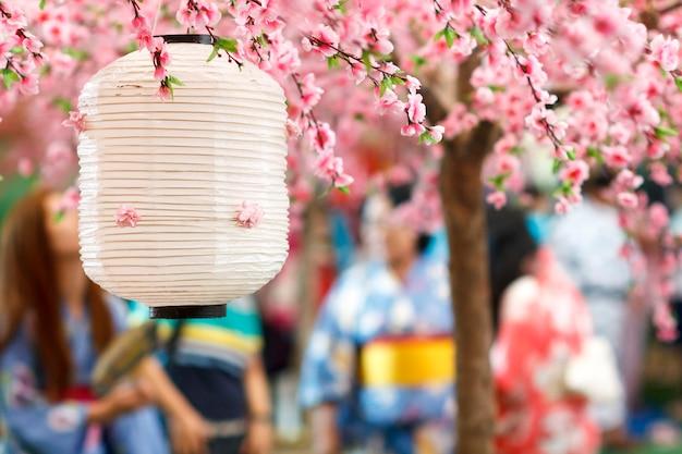 Lanterna japonesa sob a árvore sakura