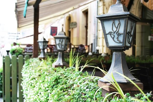 Lanternas decoradas com pássaros voando, localizadas na cerca de planta verde de um café de rua
