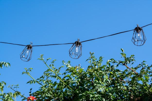 Lanternas em um fio contra o fundo do céu e da vegetação verde