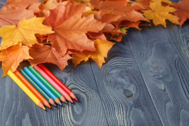 Lápis de madeira coloridos com outono folhas na mesa de madeira