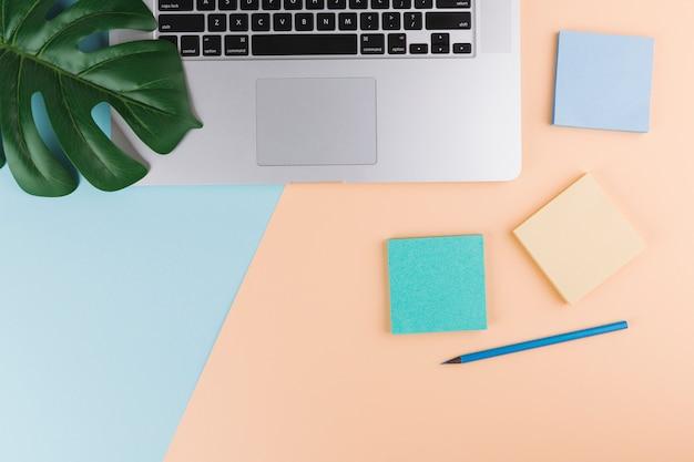 Lápis perto de papéis, planta e laptop