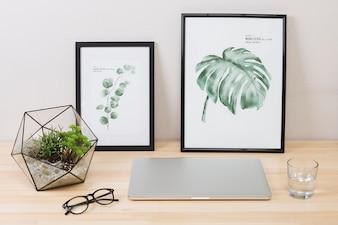 Laptop com fotos e planta na mesa