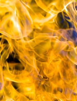 Laranja com cores quentes chamas do fogo, close-up do fenômeno perigoso, chamas durante o cozimento