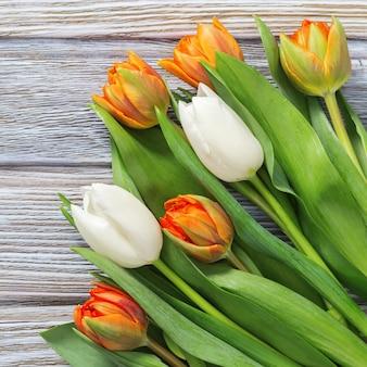 Laranja e branco que florescem tulipas frescas no fundo de madeira velho com espaço da cópia. buquê de flores naturais. vista do topo.