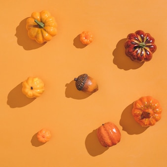Laranja iluminada pelo sol de outono com abóboras e frutas sesonais. colheita plana leiga ou conceito de halloween.