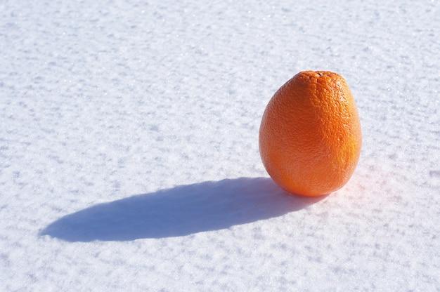 Laranja na neve em um close de um dia ensolarado