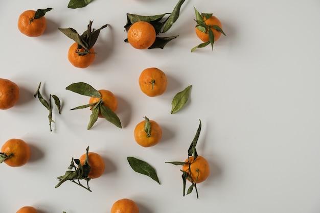 Laranjas cruas, frutos de tangerina com padrão de folhas verdes em branco.