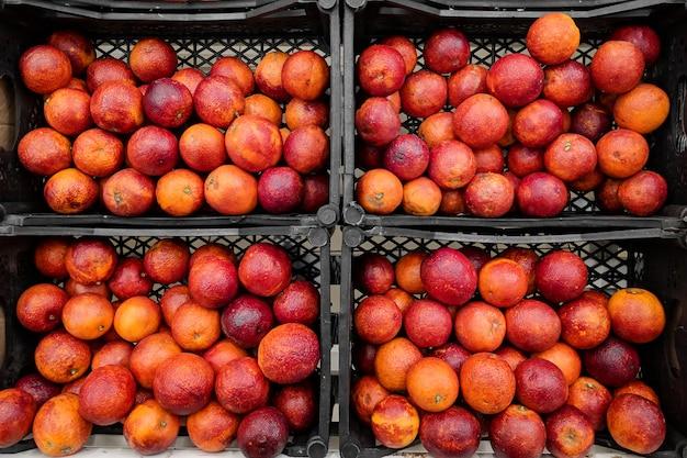 Laranjas vermelhas na caixa. variedade de laranjas frescas cultivada na loja.