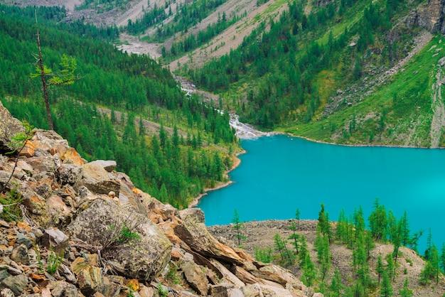 Larício pequeno no monte pedregoso no lago azul da montanha no vale. maravilhosas montanhas em dia de sol. floresta de coníferas na montanha na luz solar. paisagem vívida de natureza majestosa das terras altas.