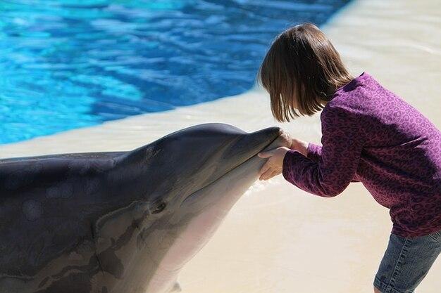 Las jovem golfinho menina vegas casino miragem