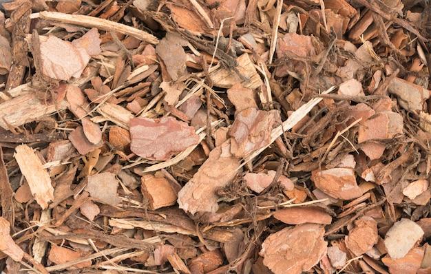 Lascas de fundo de casca de pinheiro. textura de fibras e lascas de madeira