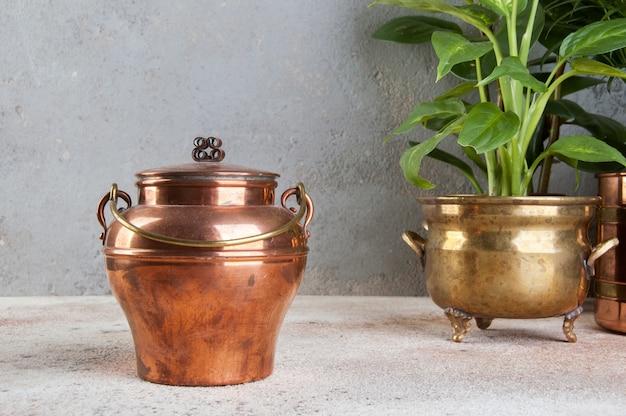 Lata de cobre vintage e plantas verdes